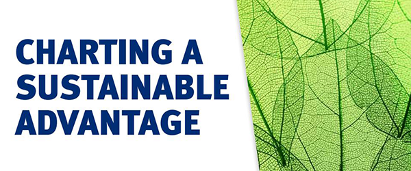Charting a Sustainable Advantage - 2018 Responsible Investing Survey